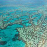 Большой Барьерный Риф — подводное плавание