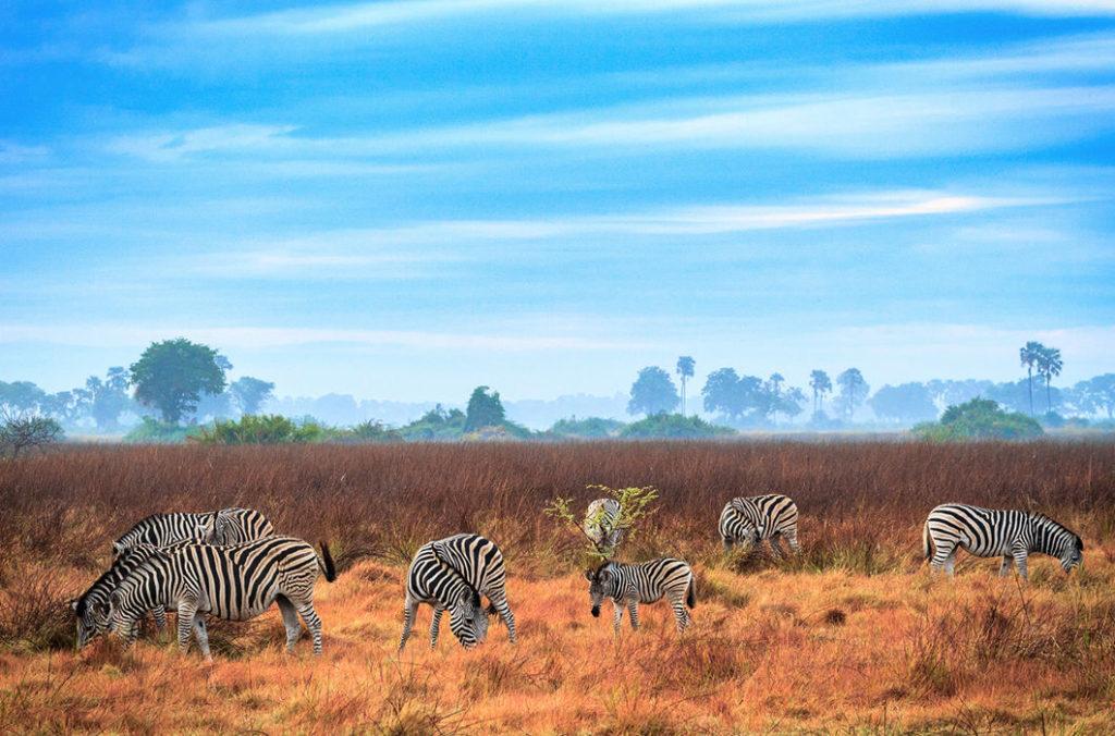 Что посмотреть туристу в Ботсване
