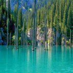 Озеро Каинды — уникальные места в Казахстане