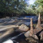 Археологические памятники реки Aucilla River
