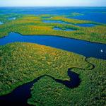Интересные факты о Эверглейдс, Флорида
