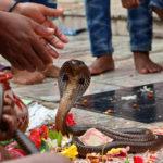 Наг Панчами - Фестиваль индуистских змей