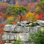 Плато Камберленд(Cumberland Plateau) - уникальные места в США