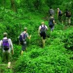 Экологический туризм (экотуризм)