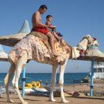 Как отдохнуть в Египте за три доллара?