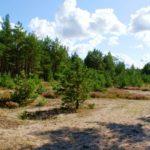 Четыре национальных парка Латвии