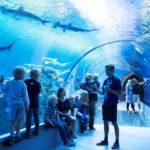 Самые посещаемые туристические достопримечательности Дании