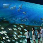 Старейшие аквариумы в Соединенных Штатах
