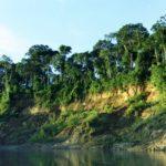 «Ману» - крупнейший заповедник амазонской биосферы
