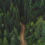 Каменный лес Хуайллай