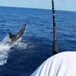 Рыбалка в Коста Рике
